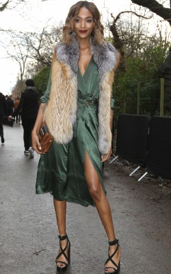Jourdan Dunn green dress and fur shawl