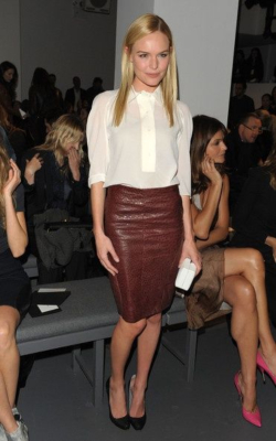 Kate Bosworth in brown pencil skirt and white shirt