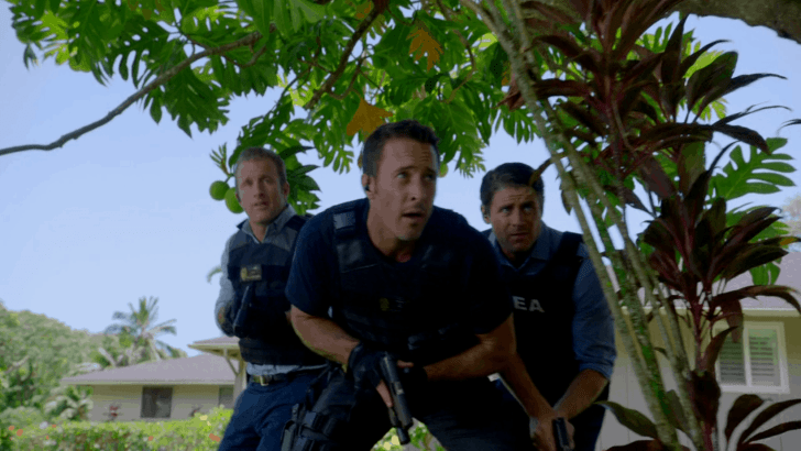 Hawaii Five O Episode 7.03 He Moho Hou Recap
