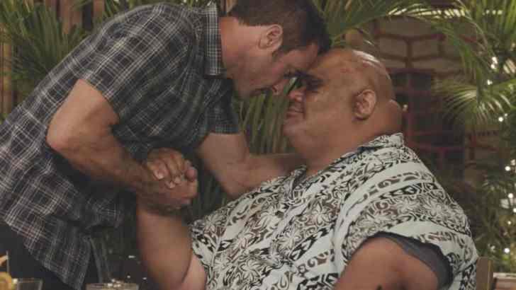Hawaii Five 0 Episode 8.04 E uhi wale no 'a'ole e nalo, he imu puhi Promo Info