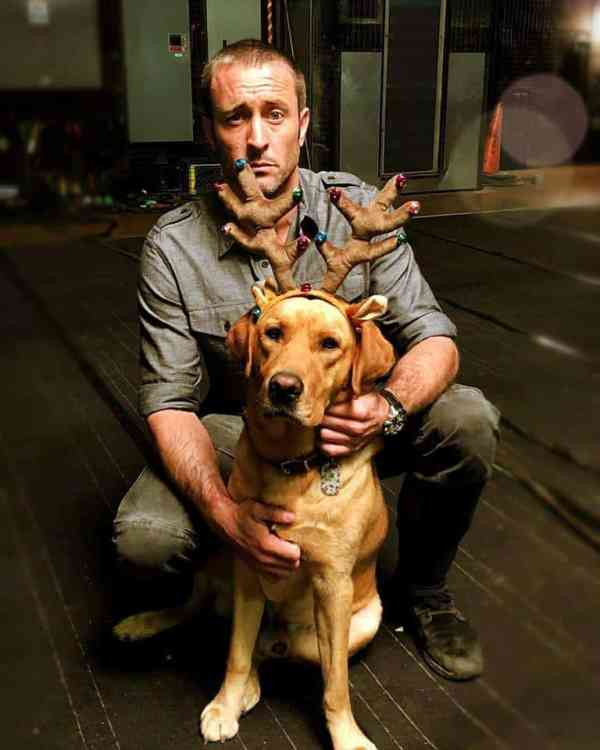 alex o'loughlin funny photo