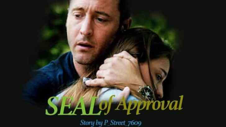Hawaii Five 0 Fan Fiction -SEAL of Approval-Part 7