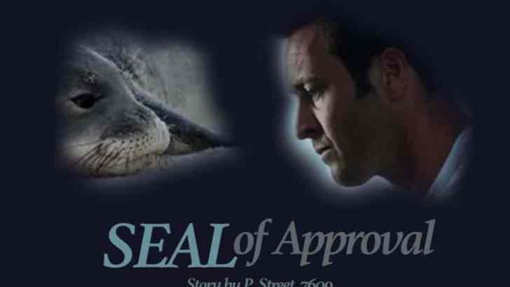 Hawaii Five 0 Fan Fiction -SEAL of Approval-Part 8