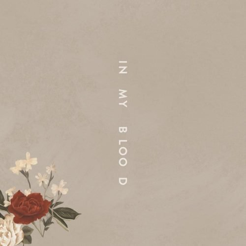 Shawn Mendes - In My Blood (Artwork)