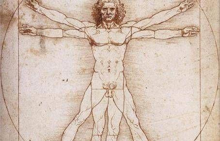 Leonardo Da Vinci - Hombre de Vetruvio