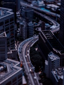 www-AG-tokyo-dinkytown_9335199a