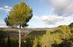 ermita-pinyeres-04