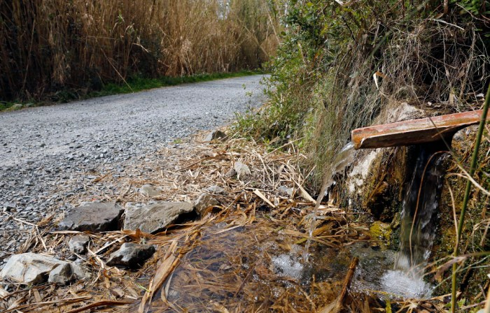 Aigua del Barranc del Codol-00