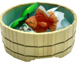Goldenfish in tinozza