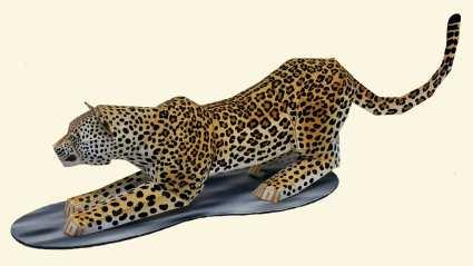 Leopardo - Asia