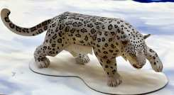 Leopardo delle nevi - Asia