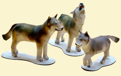 Lupi bianchi - Americhe