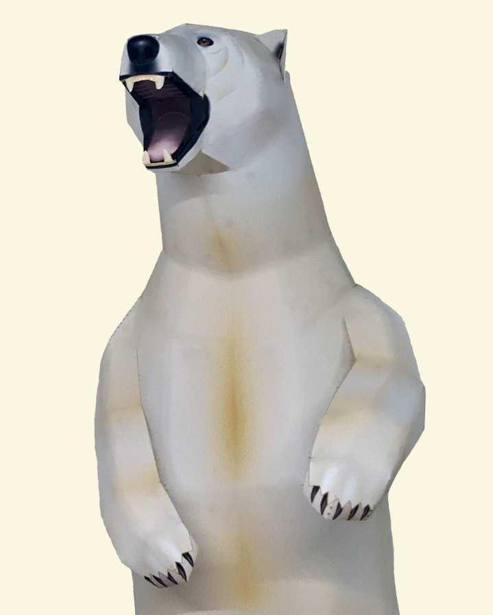 Orso Polare * Artico e Antartico