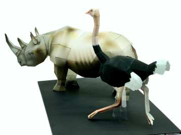 Rinoceronte & Struzzo