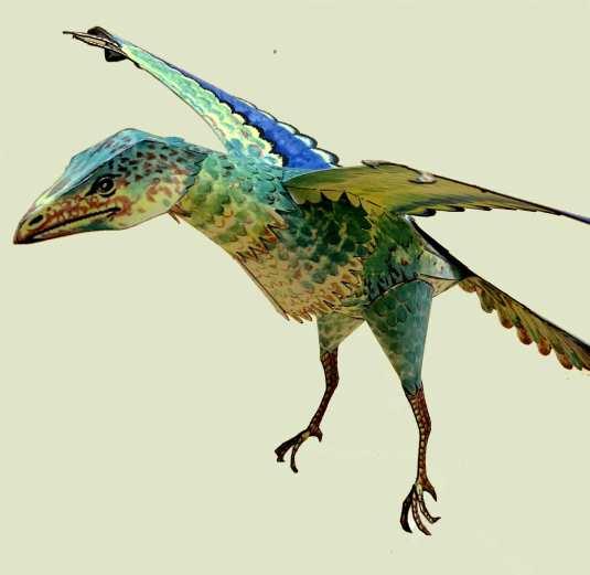 Uccello preistorico