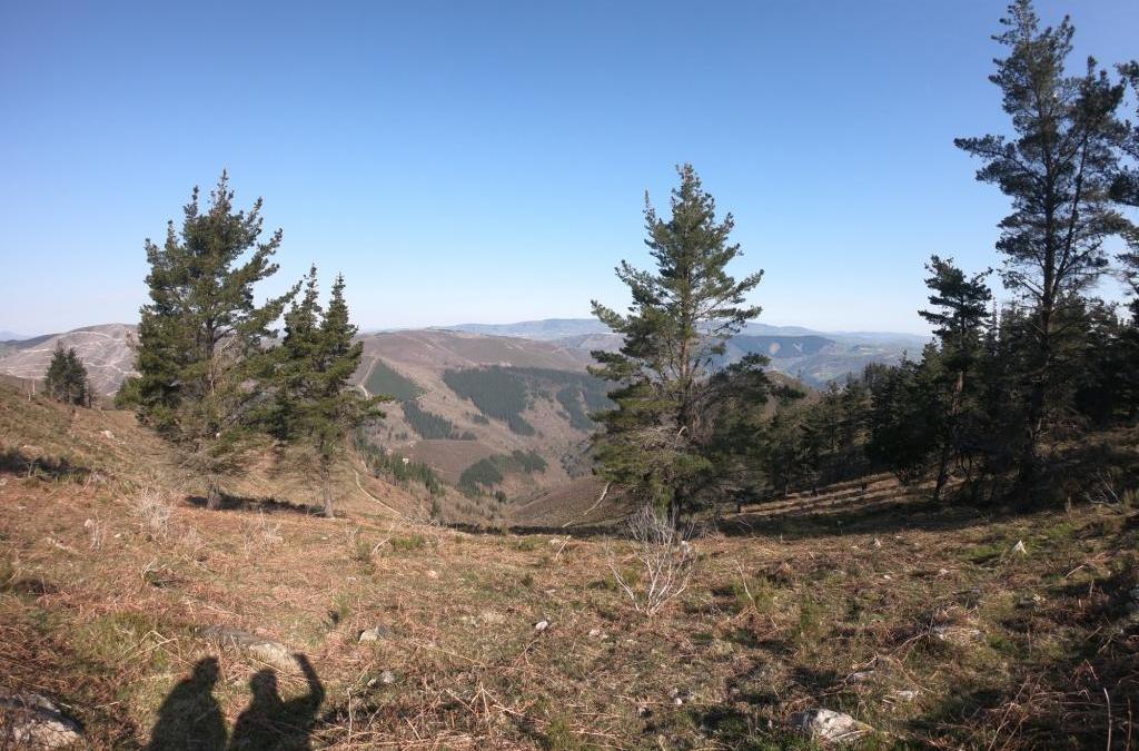 Entre Tineo y Cangas de Narcea (de Tuña a Mieldes, marzo 2019)