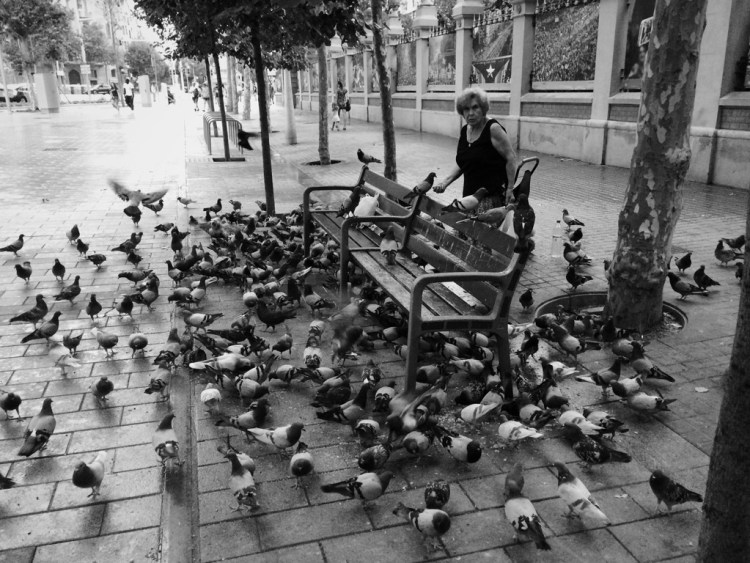 Woman feeding pigeons in Barcelona by Alfredo Liétor photography