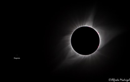 Total Solar Eclipse 2017 with Regulus