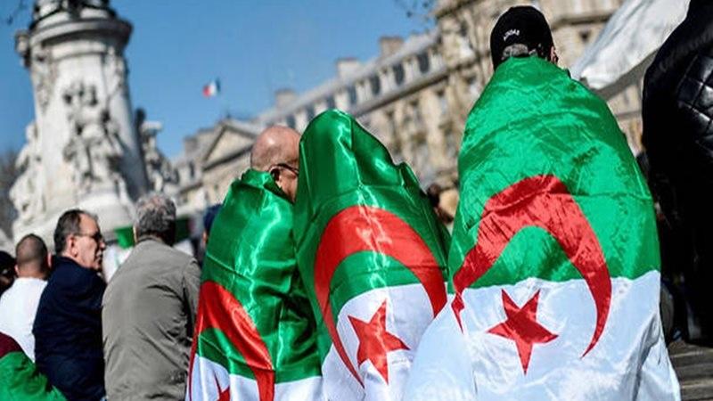 Diaspora algérienne en France