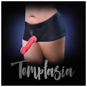 Temptasia – Harness Briefs in 8 sizes S thru 5XL – by Blush
