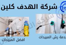 Photo of شركة مكافحة حشرات و رش مبيدات ببيشة 0550396627