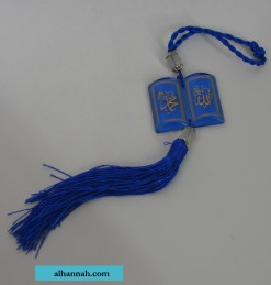 Acrylic Hanging Ornament gi907