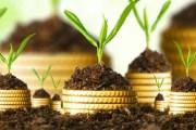 مؤشرات نمو الاستثمار الفلاحي تسجل قفزة نوعية خلال الفترة 2017-2019