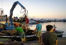 Photo of يجب على المجهزين والربابنة والبحارة وكافة المتدخلين بموانئ الصيد البحري العمل بالتدابير التالية