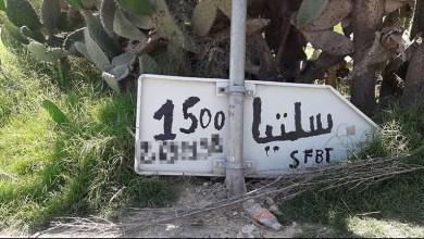 Photo of منحرف يفتح محل لبيع المشروبات الكحولية في غابة