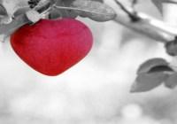 6 Sebab Gembiranya Hati Di Dalam Shalat