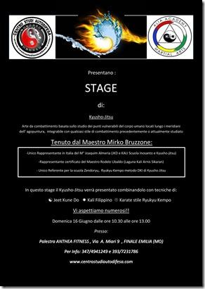 stage mirko  3 bologna