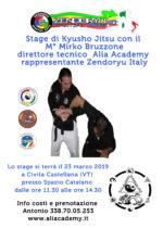 stage civita castellana alia academy zendoryu italy