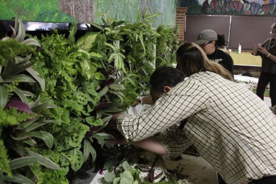cursos de jardinería vertical jardines verticales