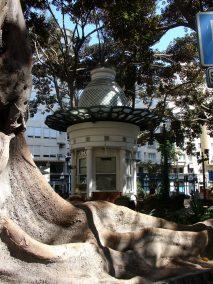 portal de elche 4 parques y jardines