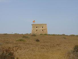 TABARCATORREON