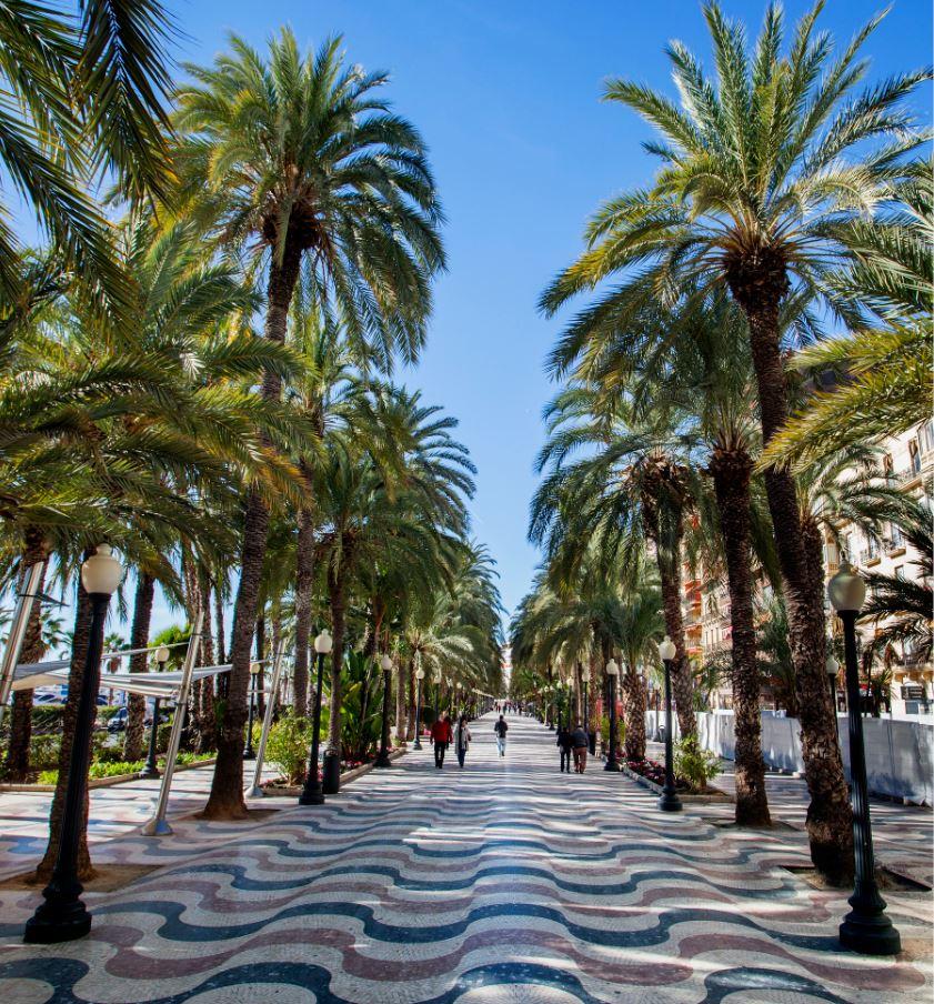 L'Esplanada d'Espanya - ALICANTE City & Beach