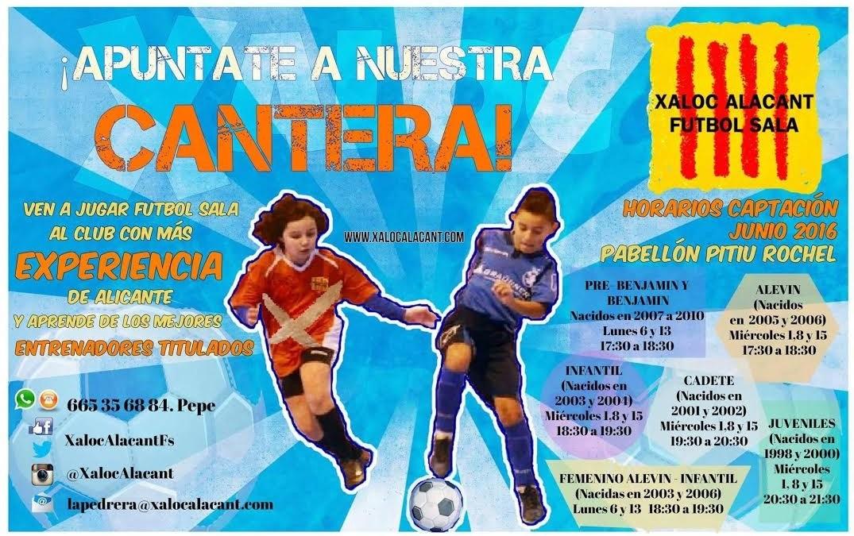 Fútbol Sala para niños en el pabellón Pitiu Rochel
