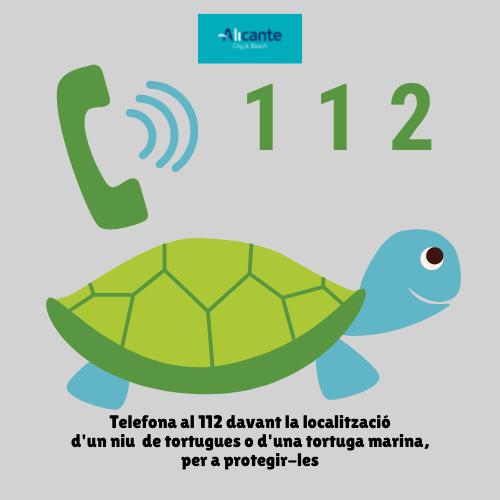 'Alerta Tortuga' a les platges d'Alacant