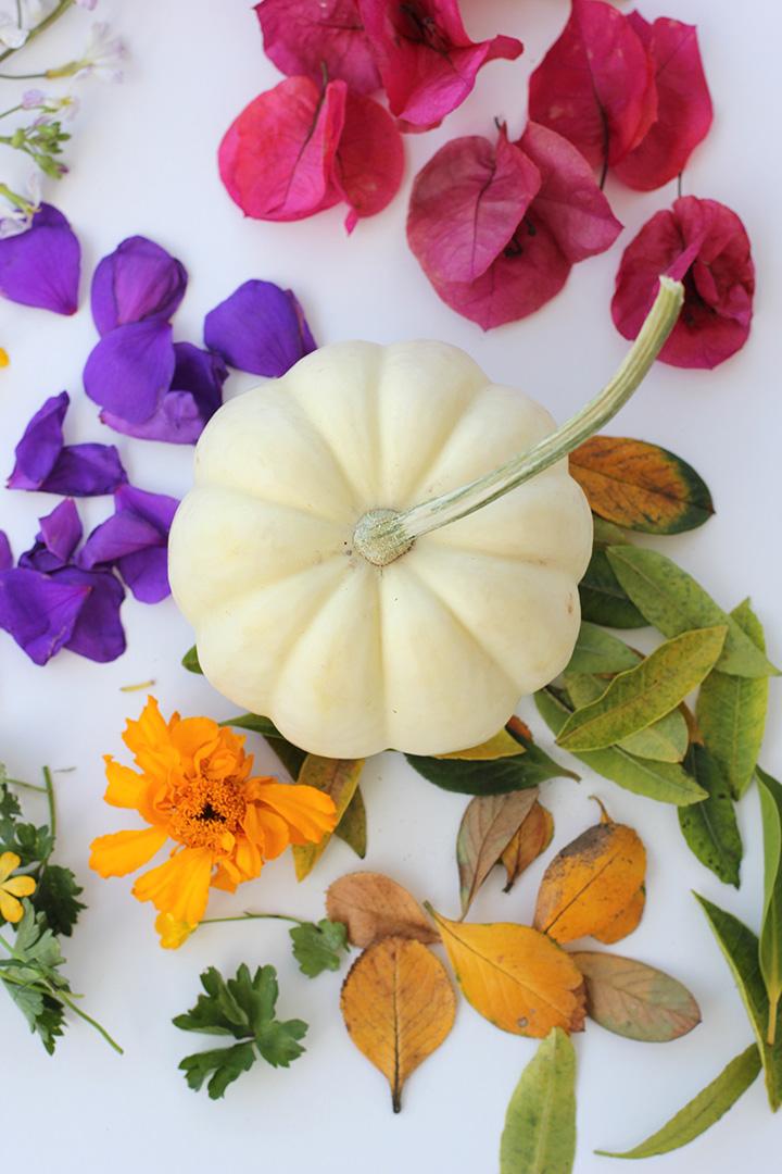 Decoupage Flower Pumpkins  alice & lois