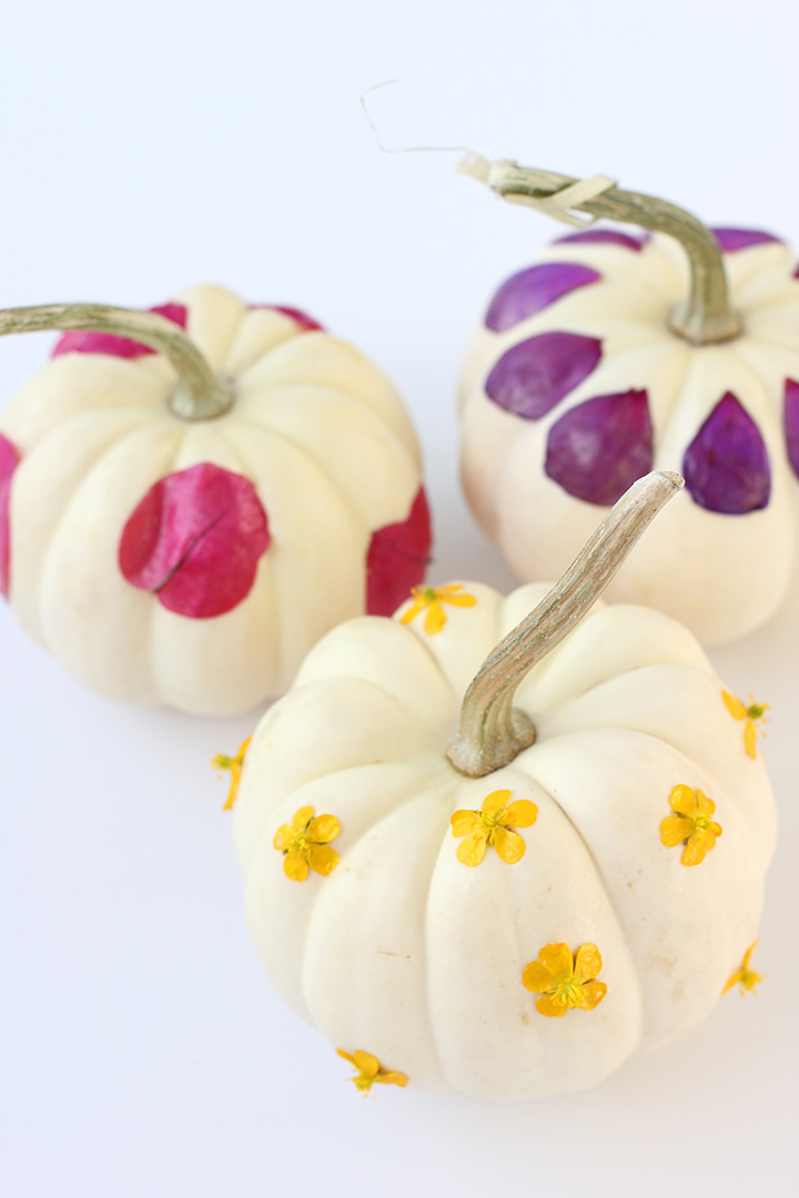 Decoupage Flower Pumpkins |alice & lois