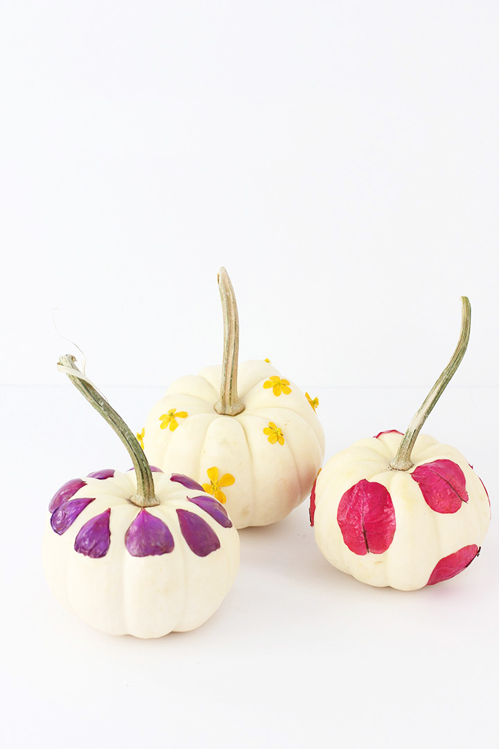 Floral decoupage pumpkins from Alice & Lois