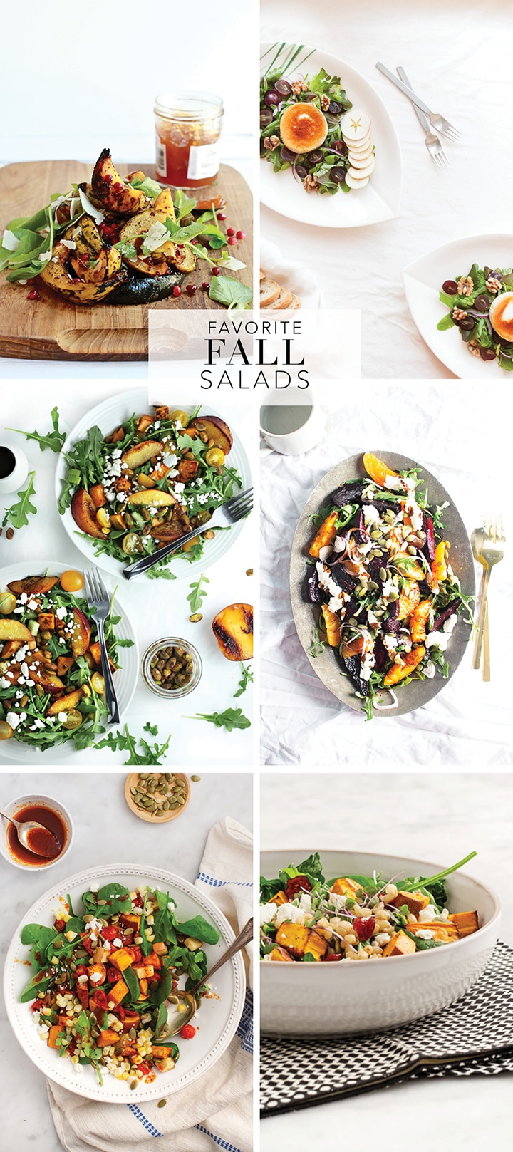 A roundup of ten amazing fall salad recipes to try...