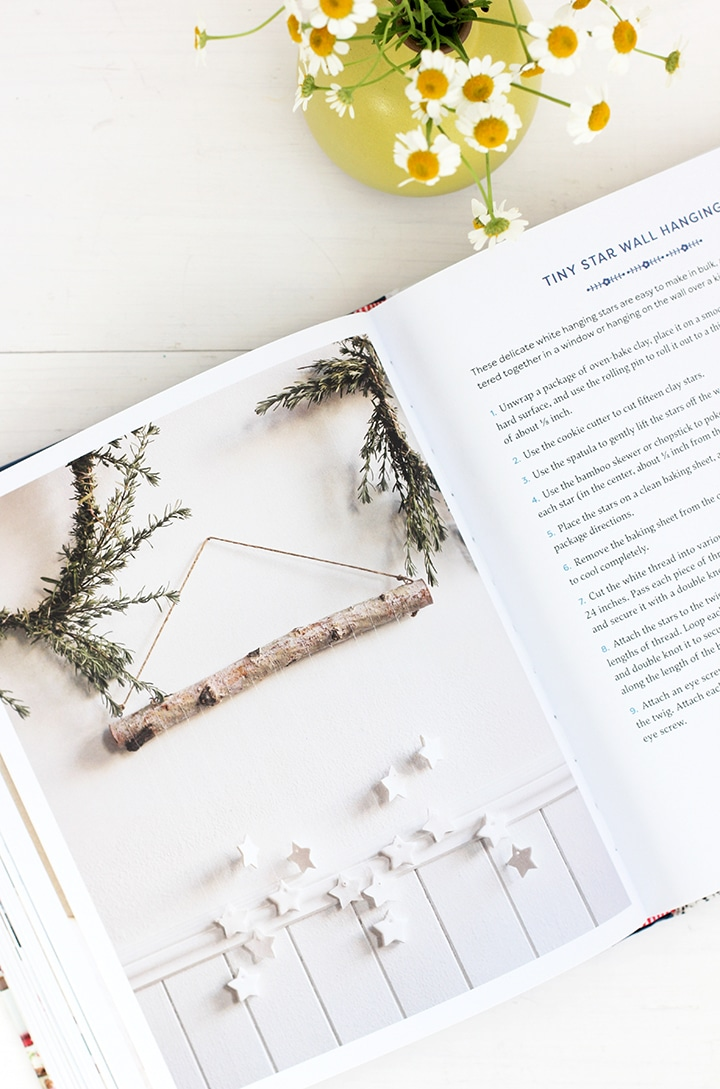 Scandinavian Gatherings Book