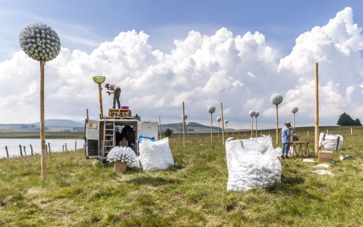 Pappus Lactés - Alice et David Bertizzolo - Festival Horizon Arts natures en Sancy - Lac de Bourdouze - Massif du Sancy - Puy de Dome - France - Juin 2015 - Crédit photo Tiphaine Buccino - Suite du montage de pappus lactés
