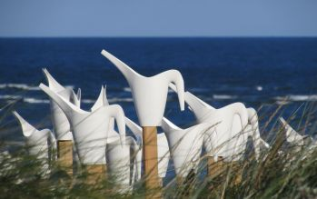 Birds Alice et David Bertizzolo - Festival Wadden tide 2016 - blavand - danemark en aout 2016 : photo arrosoirs et piquets