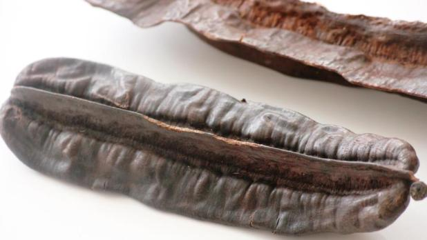 l'Esesè: fruit du Tetrapleura tetraptera
