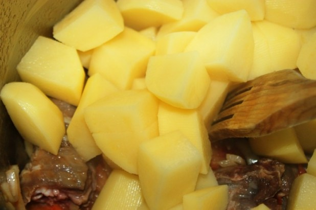 ragout de pangolin (4)