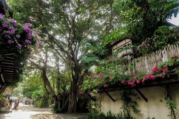 Panburi-village