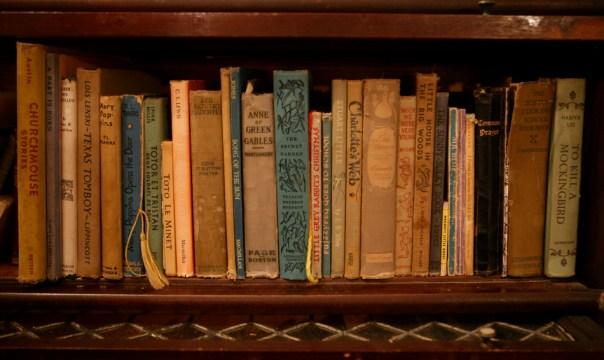 alicia bookshelf reading kindle books