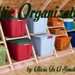 Attic Organization